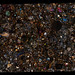 NWA 4723 Meteorite Thin Section - Gigapixel