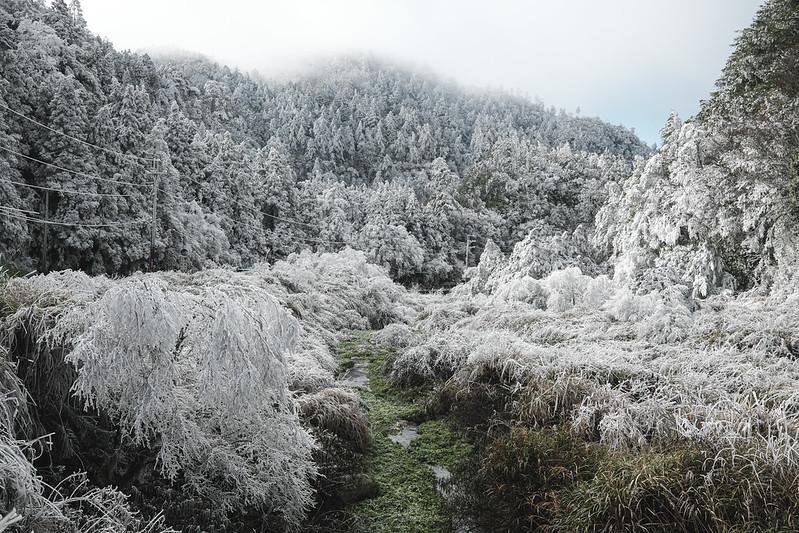 霧淞 思源埡口|Siyuan Pass