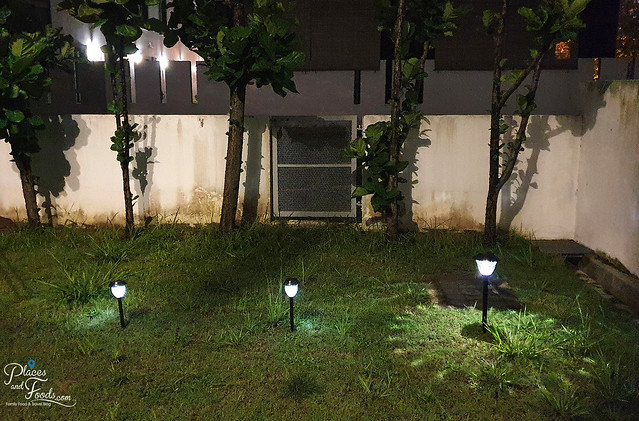 solar bee solar lights malaysia night