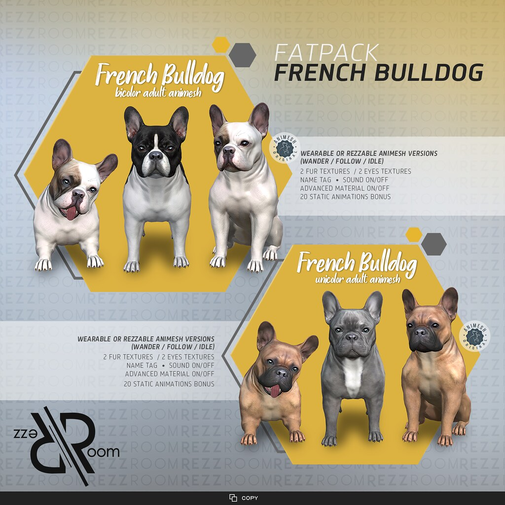 [REZZ ROOM] FRENCH BULLDOG ADULT (Companion)