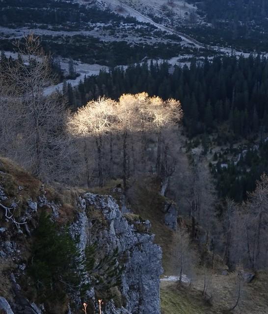 Herbst-Spotlight