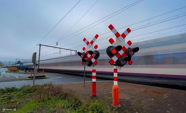 #Signals - #FlickrFriday - 9283