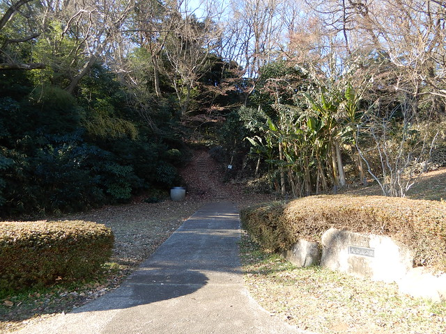 Okurayama Park in January