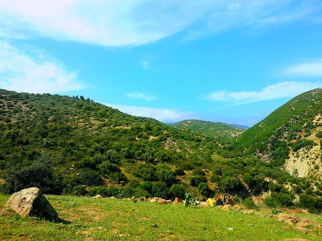 Ein tiefes Tal // A deep valley