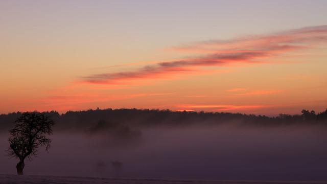 Morgens auf der Alb