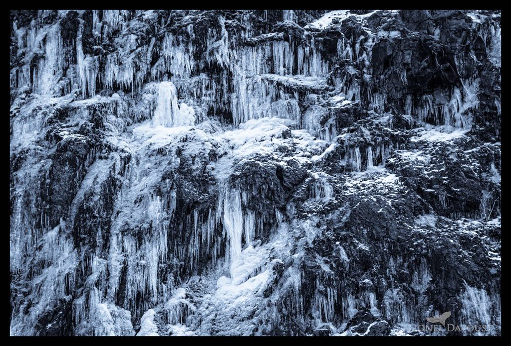 Fangs of ice