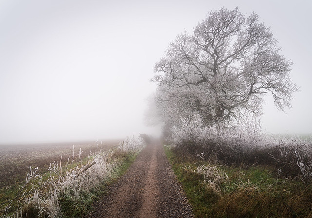 The path to nowhere