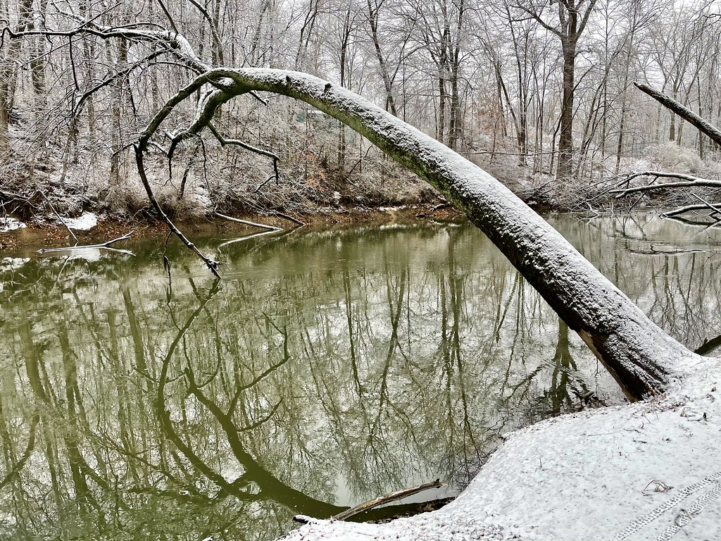 Winter in Indiana (7)