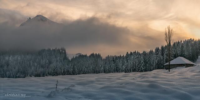 Ambiance de fin de journée hivernale (Switzerland)