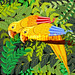 Yellow Parrots in the Jungle Vector Caribbean Art :copyright: BluedarkArt TheChameleonArt :small_orange_diamond: Buy License / Download :small_orange_diamond: