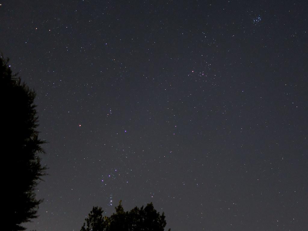The Pleiades, Davis's Dog, The Hyades & Orion