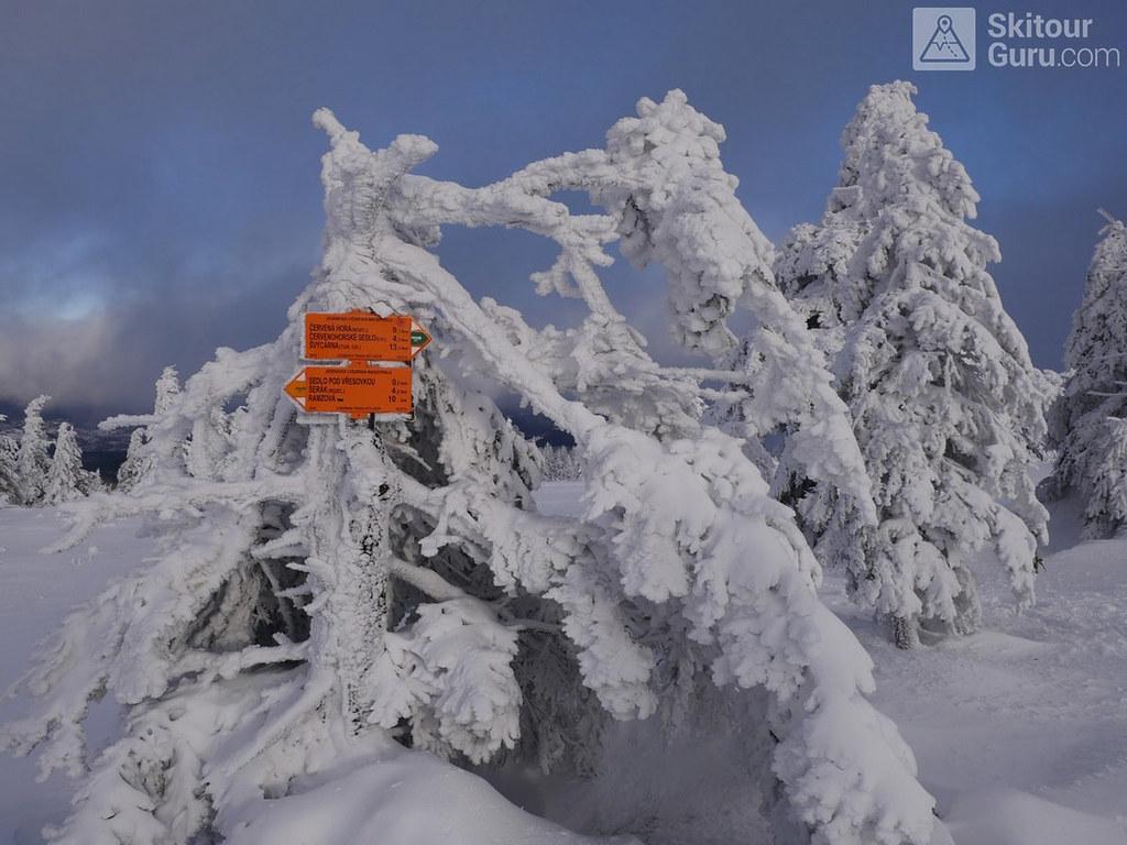 Keprník Jeseníky - Králický Sněžník Tschechien foto 41