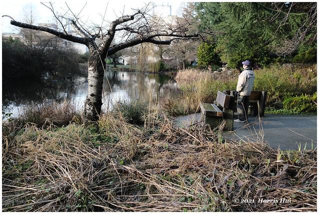 Alone In The Park - Minoru XTT0663e