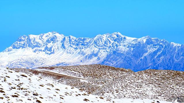 Alpic Zone Desert