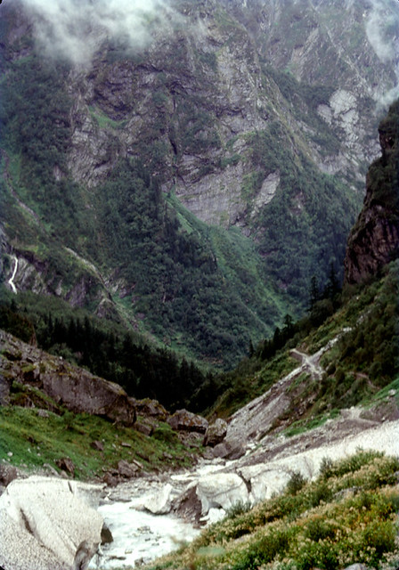 View down the Valley of Flowers, on way back