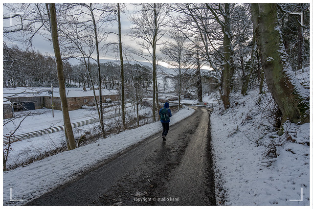Winter 2021 - Lammermuir Hills 210109