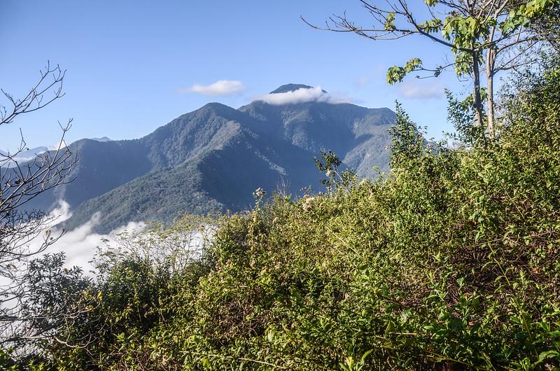 登卡社山山坡林道南面展望 (1)