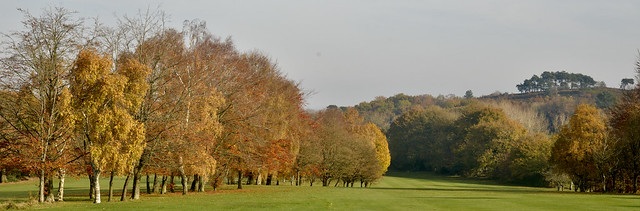 AUTUMN COLOURS ON LICKEY GOLF COURSE