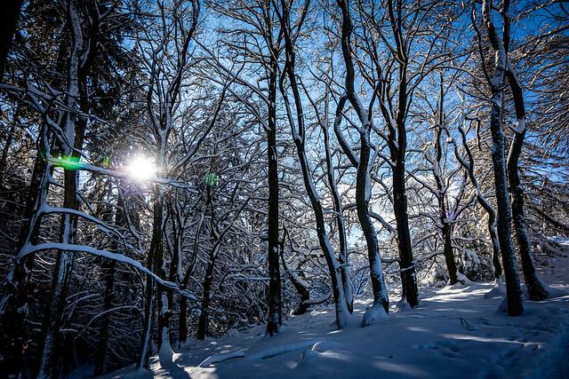 Sonne & Schnee