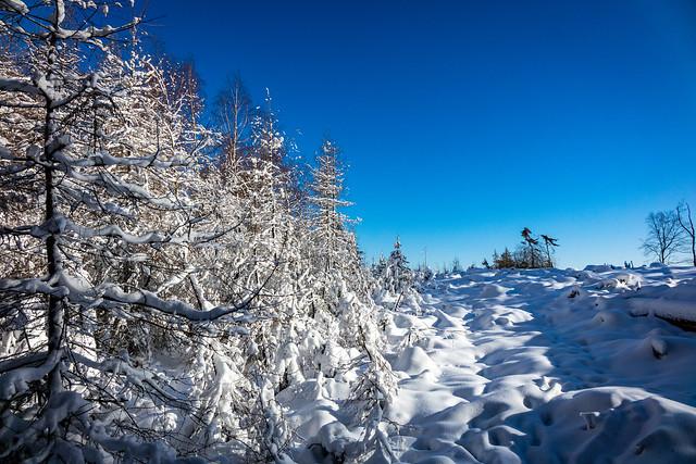 Schnee & Blauer Himmel