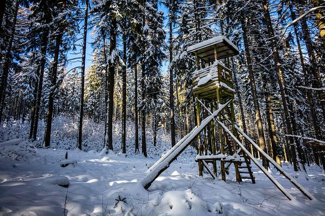 Hochsitz im Winter