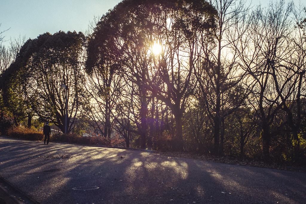 大府健康の森