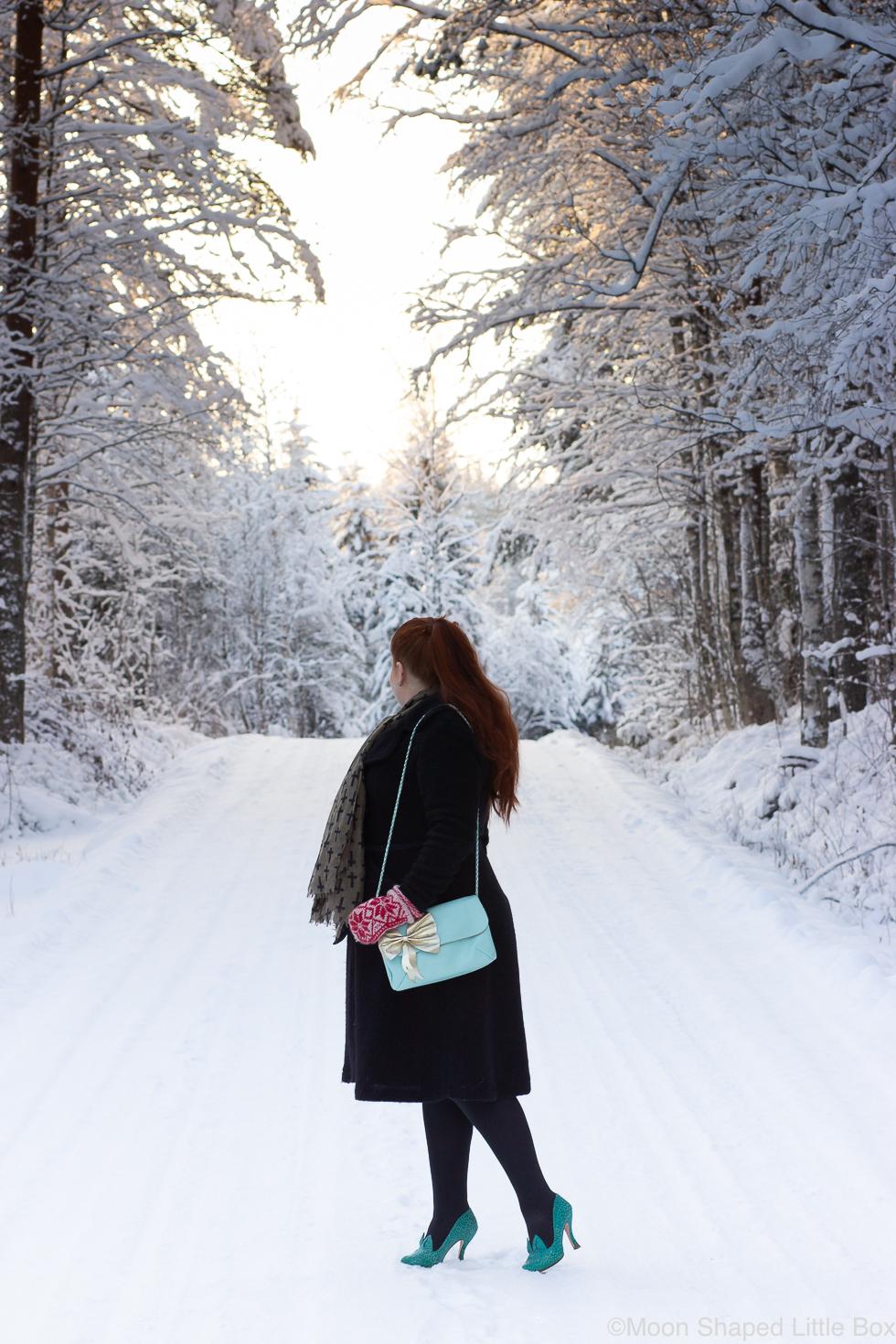 Talvimuoti-2020-Pohjois-Karjala