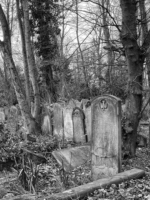 A walk in Tower Hamlets Cemetery Park