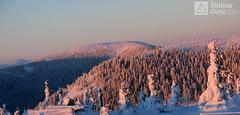 Králický Sněžník - údolím Moravy