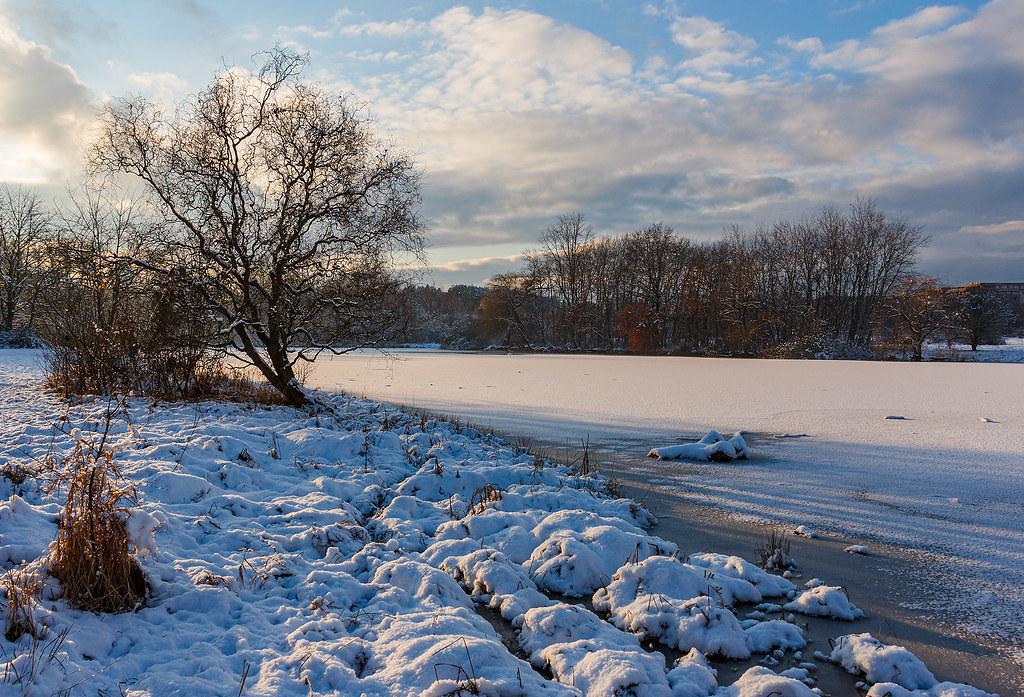 Zasněžený Milíčovský rybník