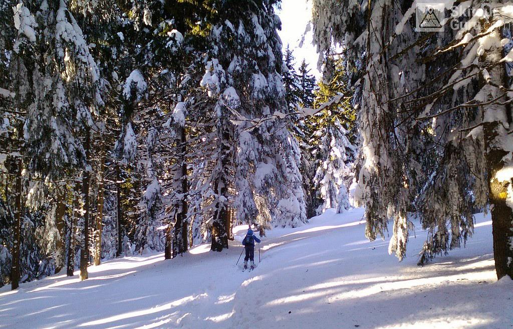Králický Sněžník - údolím Moravy Jeseníky - Králický Sněžník Tschechien foto 10