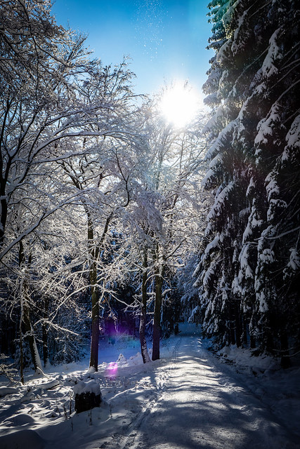 Auch ganz viel Schnee