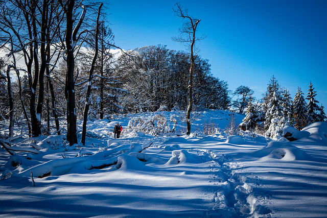 (Schnee-)Wege