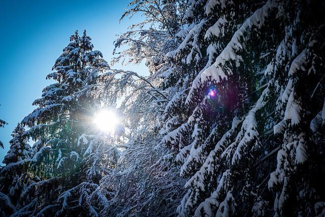 Sonne, Schnee, Schön