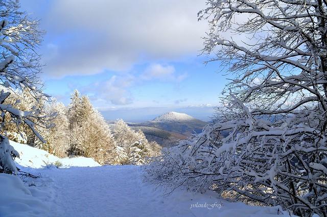 La neige a étendu son blanc manteau .. ....