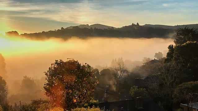 Burning Off: Morning Fog