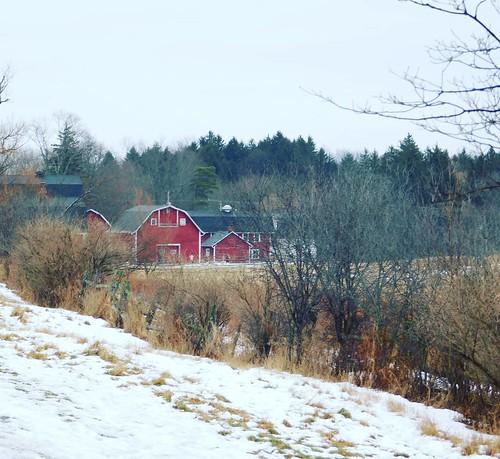 The farm #KnoxFarm #eastaurora #wny #winter #nature #hiking