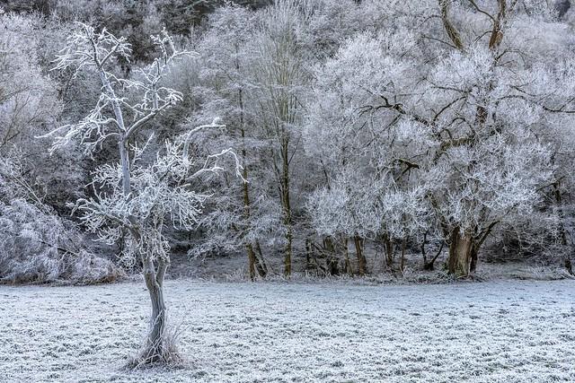 *Frosty Ahr Valley*