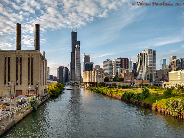 Chicago River, looking towards the Willis Tower