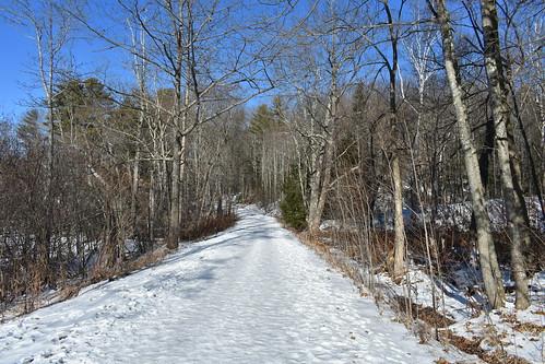 millerpark lisbonmaine newengland nikond3400 january2021 winter landscape woods snow ice unitedstatesofamerica