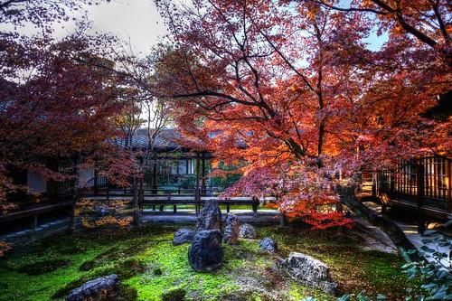 22-12-2020 Kyoto, Ken-nin-ji Temple in aftetnoon (23)