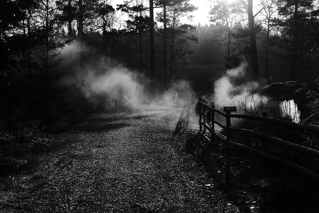 Dec 23, 2020 Smoke screen