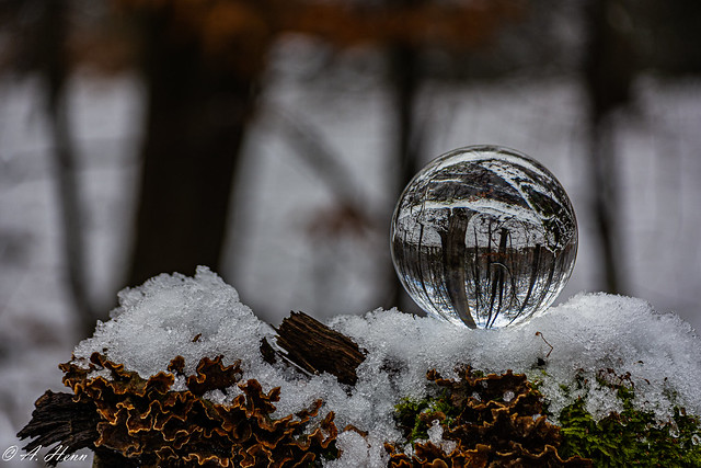 Lensball in the snow (In explore Jan. 2021)