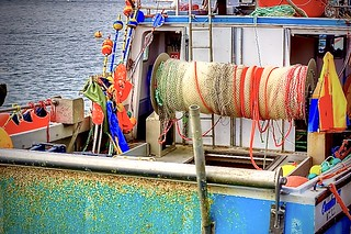Fishermans Cove NS CA.