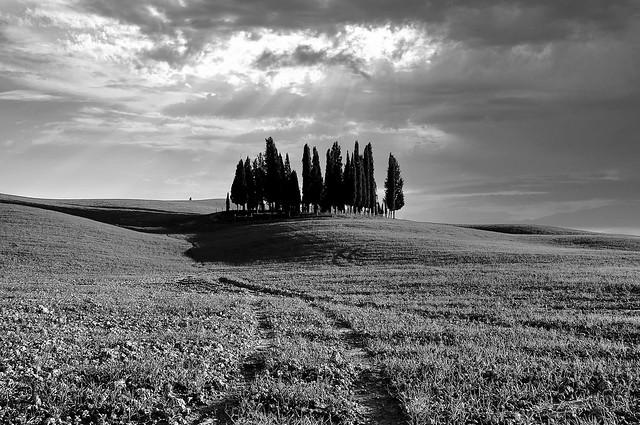 Terre Toscane