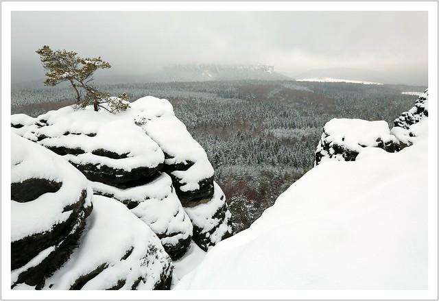 Schnee-Eis-Nebel-Winter