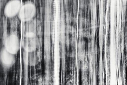 monochrome whatif imageediting composite collage photomontage lightstreak intentionalcameramovement lapinlahti lappviken helsinki helsingfors finland suomi pekkanikrus skrubu pni