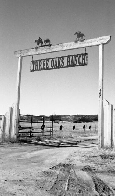 Three Oaks (NR117-01-136)