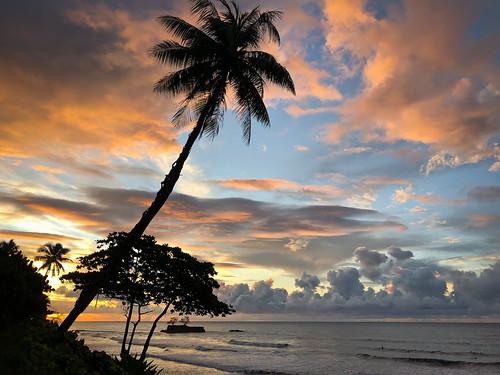 tahiti sunrise pacifique pacific polynesia polynesie frenchpolynesia french ocean mer soleil papenoo baie surf cocotier coconut vague calme zen sérénité