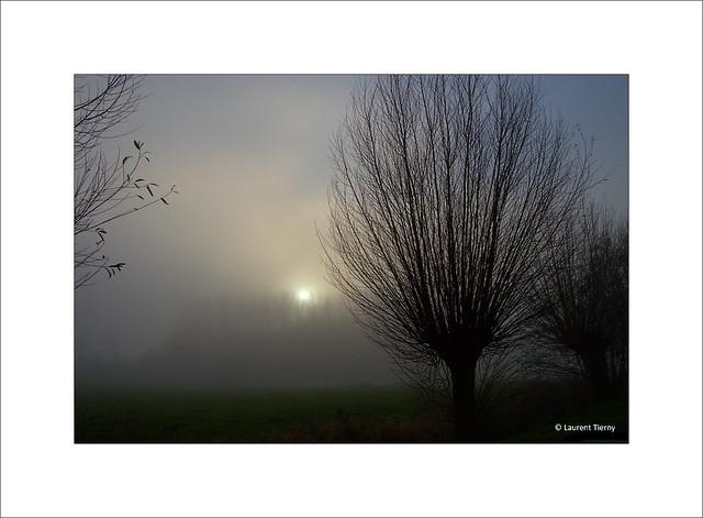 Le brouillard se lève doucement...